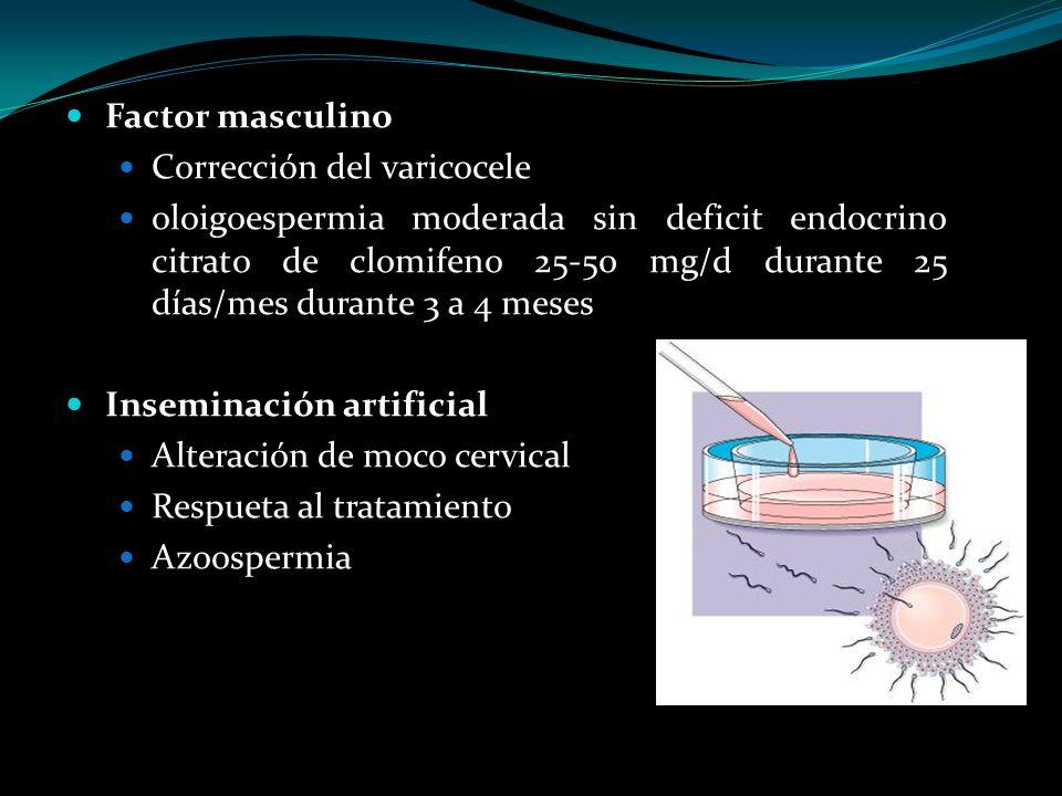 Factor masculino Corrección del varicocele.