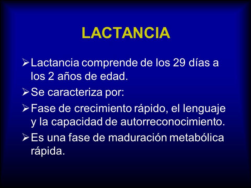 LACTANCIA Lactancia comprende de los 29 días a los 2 años de edad.