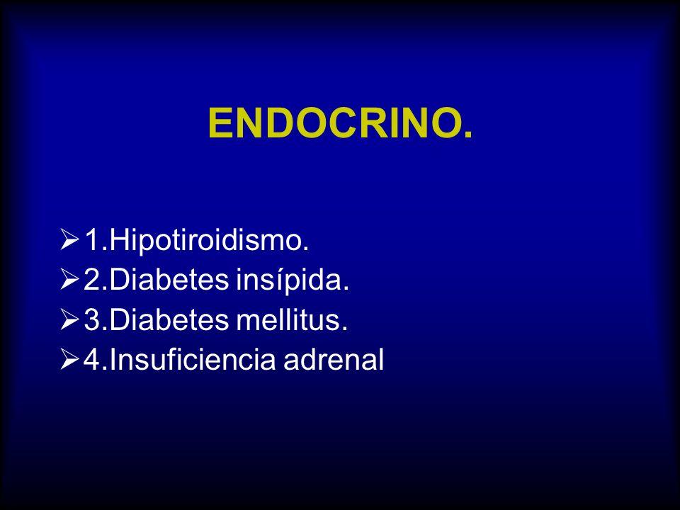 ENDOCRINO. 1.Hipotiroidismo. 2.Diabetes insípida. 3.Diabetes mellitus.