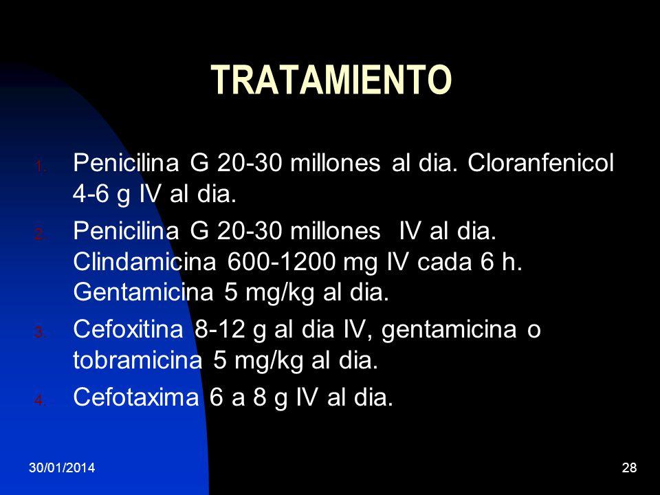 TRATAMIENTO Penicilina G 20-30 millones al dia. Cloranfenicol 4-6 g IV al dia.