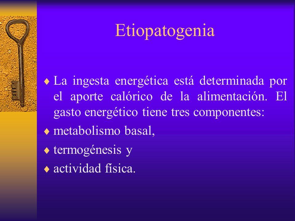 EtiopatogeniaLa ingesta energética está determinada por el aporte calórico de la alimentación. El gasto energético tiene tres componentes:
