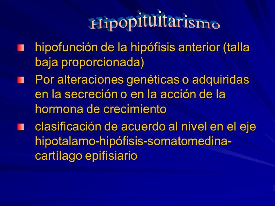 Hipopituitarismo hipofunción de la hipófisis anterior (talla baja proporcionada)