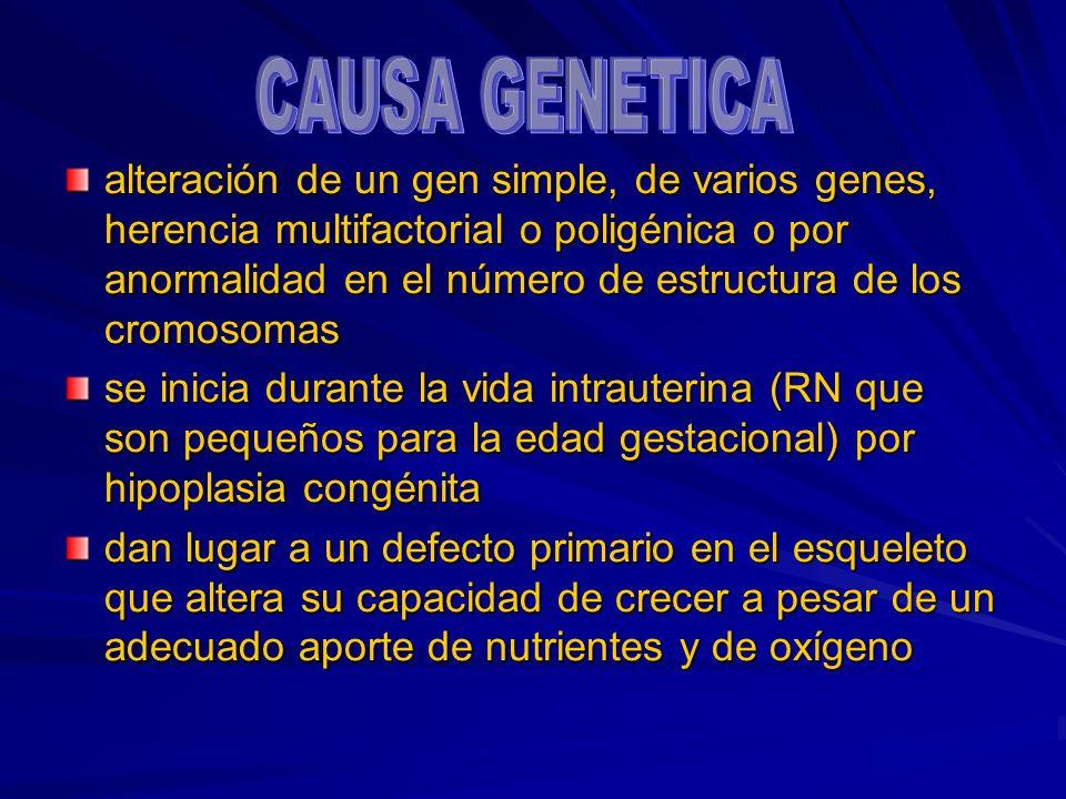 CAUSA GENETICA