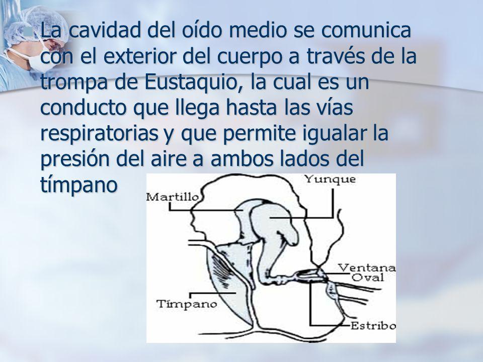 La cavidad del oído medio se comunica con el exterior del cuerpo a través de la trompa de Eustaquio, la cual es un conducto que llega hasta las vías respiratorias y que permite igualar la presión del aire a ambos lados del tímpano