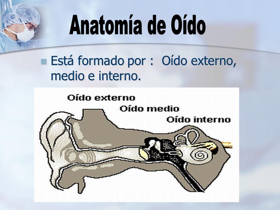 Anatomía de Oído Está formado por : Oído externo, medio e interno.