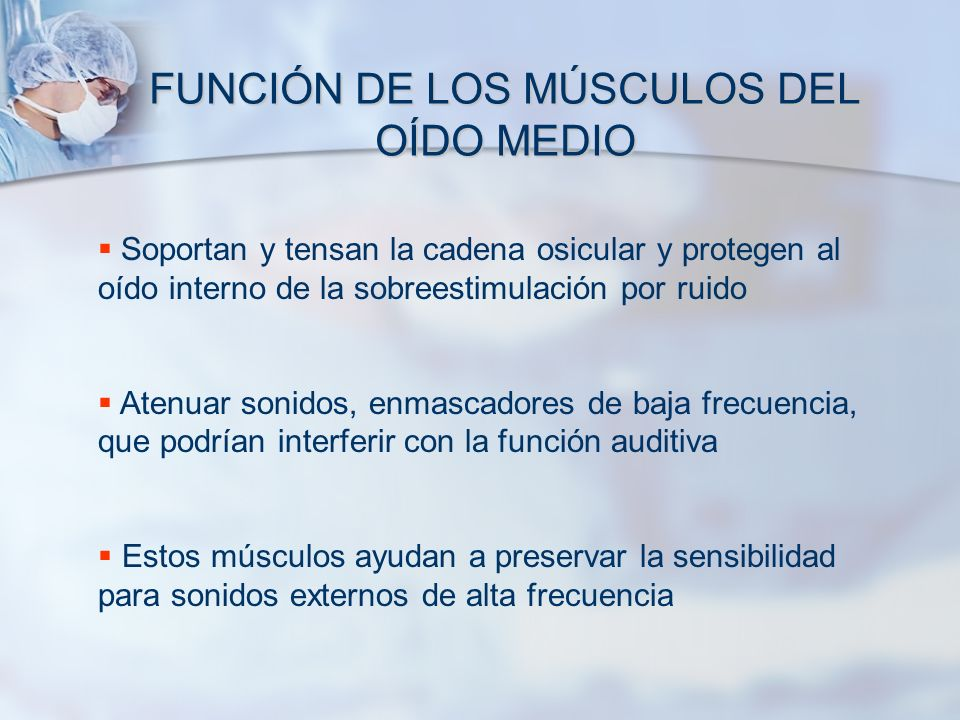FUNCIÓN DE LOS MÚSCULOS DEL OÍDO MEDIO