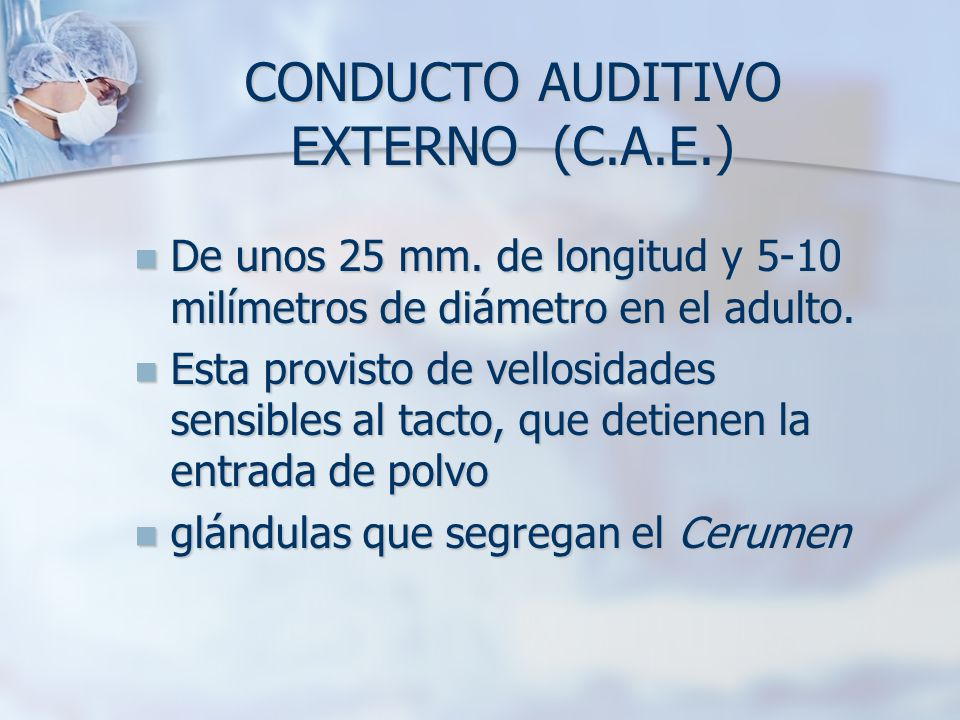 CONDUCTO AUDITIVO EXTERNO (C.A.E.)