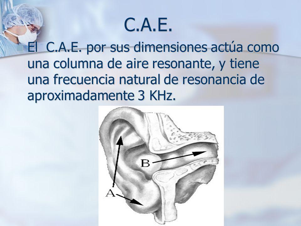 C.A.E.