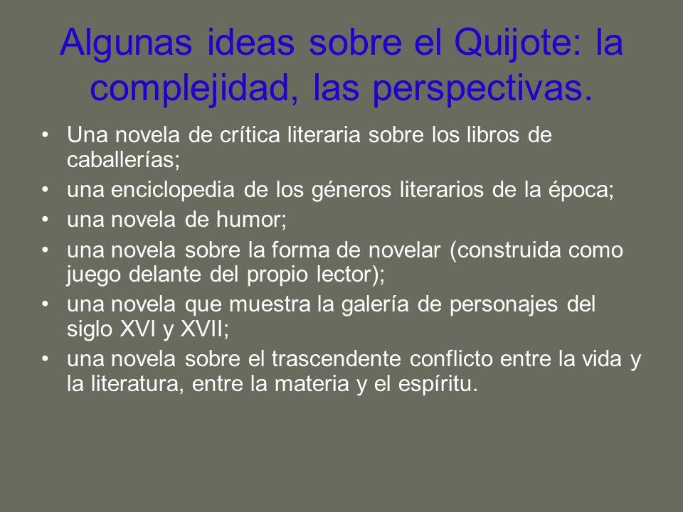 Algunas ideas sobre el Quijote: la complejidad, las perspectivas.