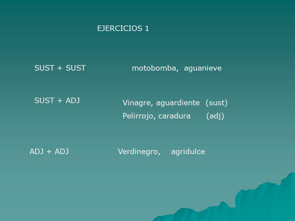 EJERCICIOS 1 SUST + SUST. motobomba, aguanieve. SUST + ADJ. Vinagre, aguardiente (sust) Pelirrojo, caradura (adj)