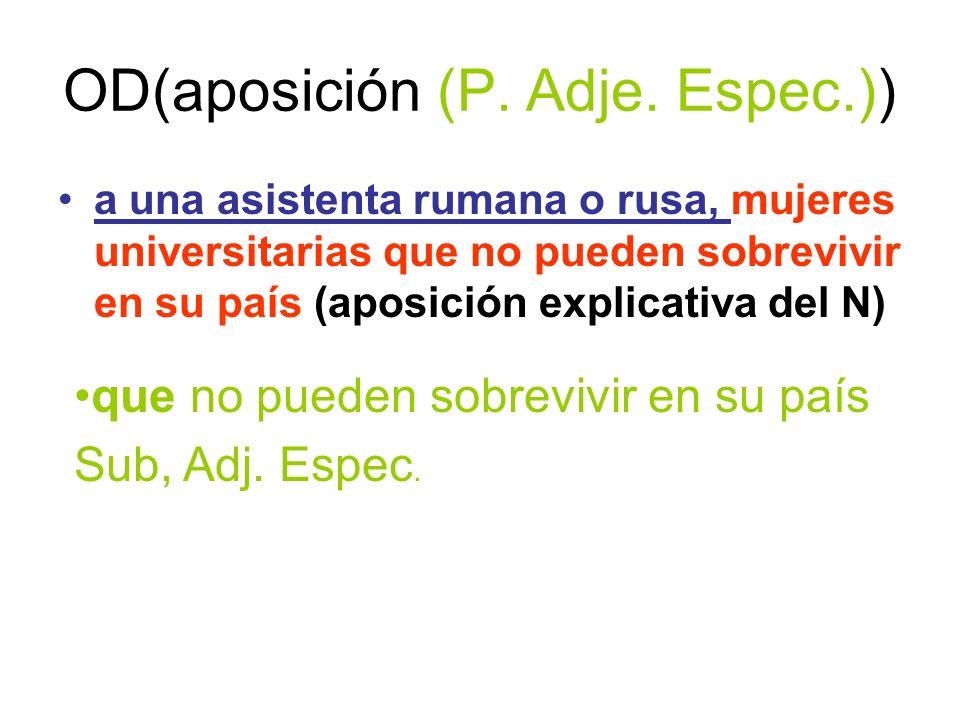 OD(aposición (P. Adje. Espec.))