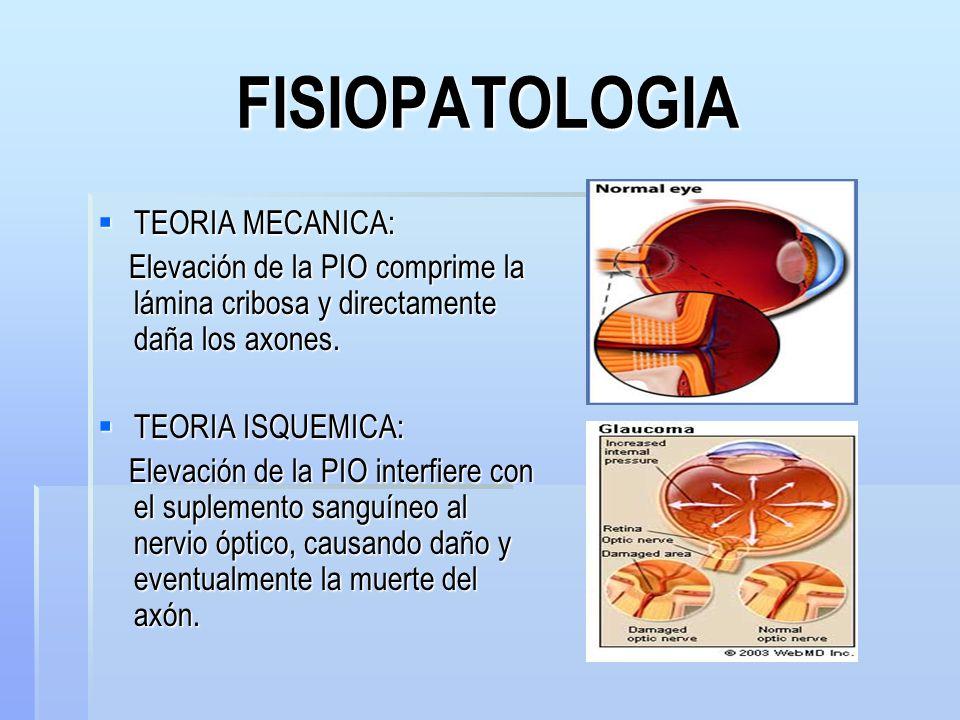FISIOPATOLOGIA TEORIA MECANICA: