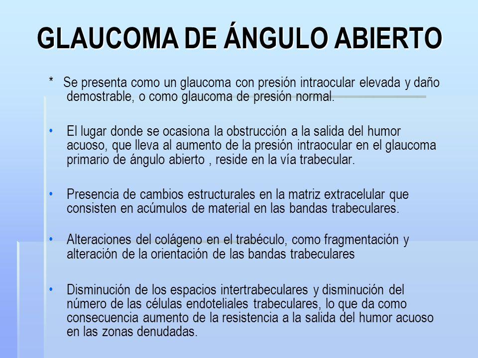GLAUCOMA DE ÁNGULO ABIERTO