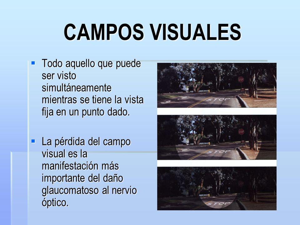 CAMPOS VISUALES Todo aquello que puede ser visto simultáneamente mientras se tiene la vista fija en un punto dado.