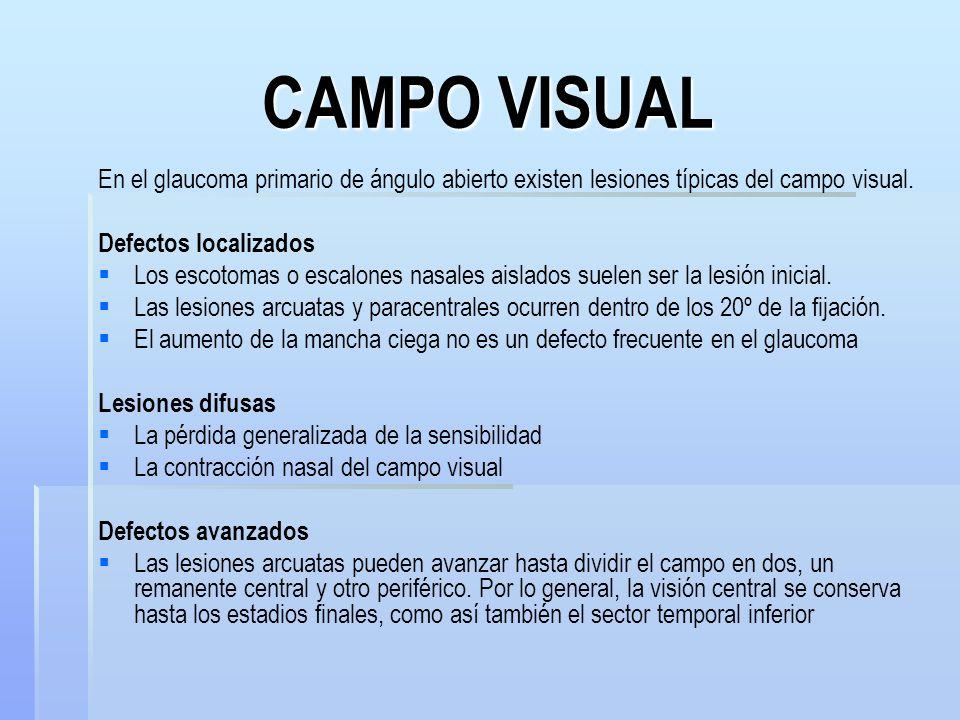 CAMPO VISUAL En el glaucoma primario de ángulo abierto existen lesiones típicas del campo visual. Defectos localizados.