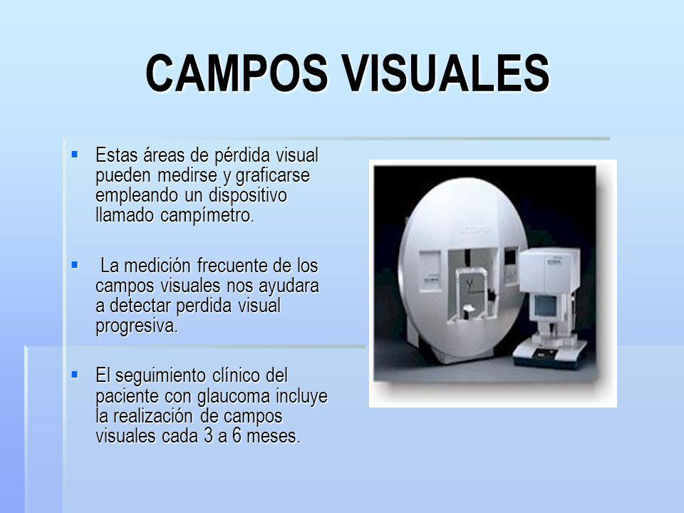 CAMPOS VISUALES Estas áreas de pérdida visual pueden medirse y graficarse empleando un dispositivo llamado campímetro.