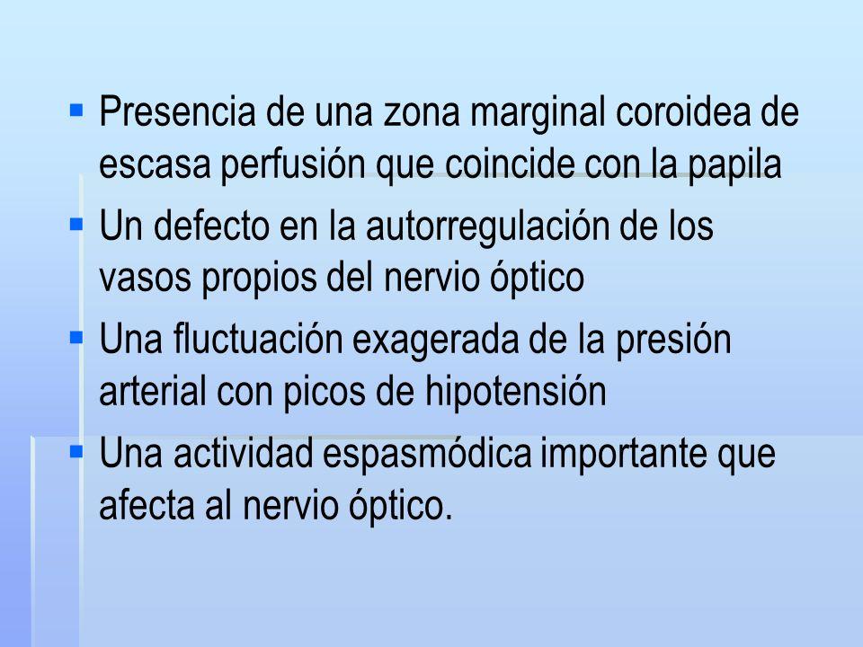Presencia de una zona marginal coroidea de escasa perfusión que coincide con la papila