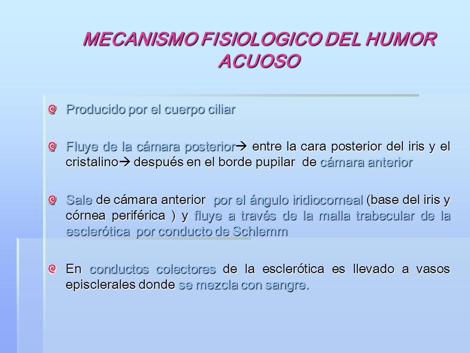 MECANISMO FISIOLOGICO DEL HUMOR ACUOSO