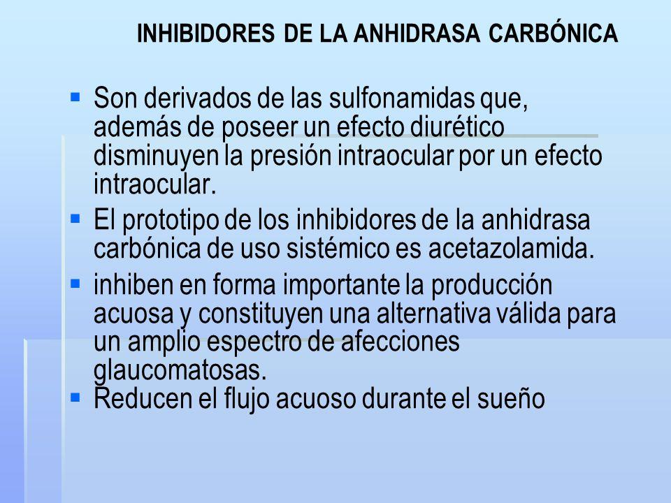 INHIBIDORES DE LA ANHIDRASA CARBÓNICA