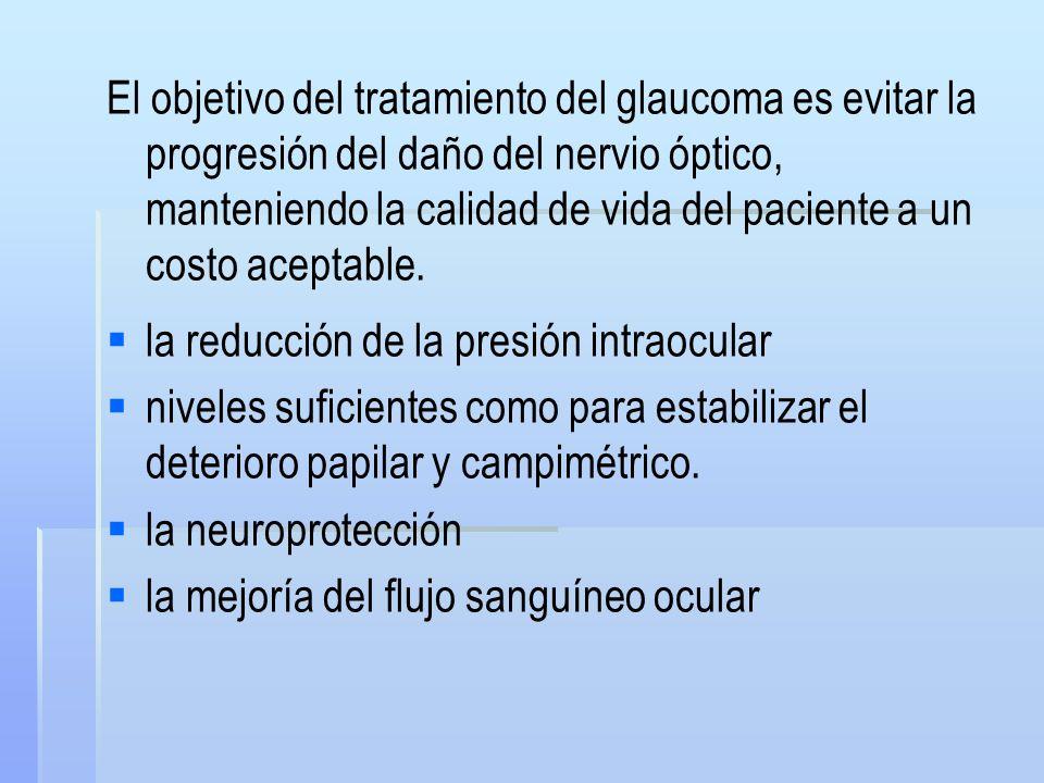 El objetivo del tratamiento del glaucoma es evitar la progresión del daño del nervio óptico, manteniendo la calidad de vida del paciente a un costo aceptable.