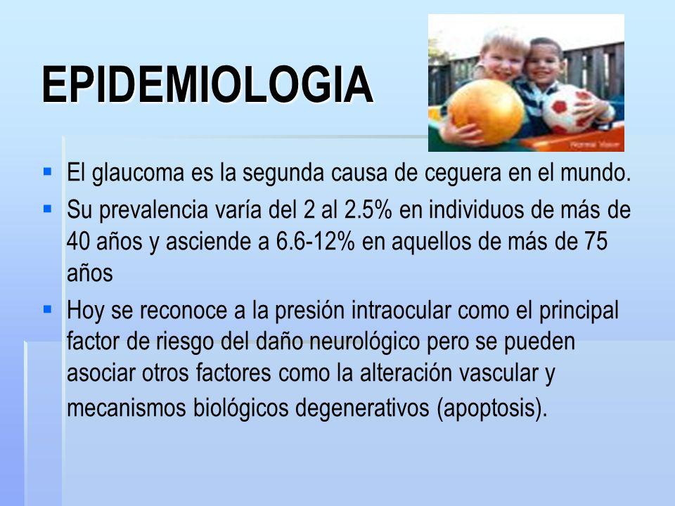 EPIDEMIOLOGIA El glaucoma es la segunda causa de ceguera en el mundo.