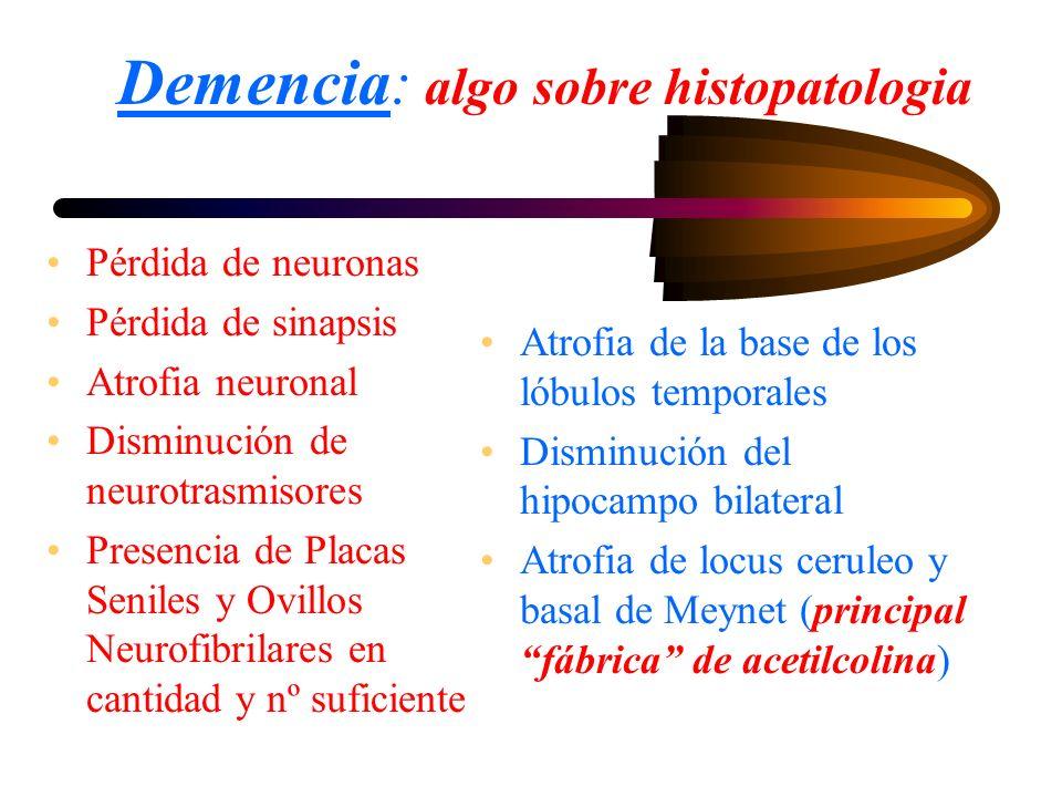 Demencia: algo sobre histopatologia