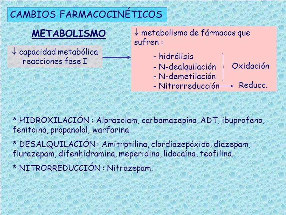  capacidad metabólica reacciones fase I
