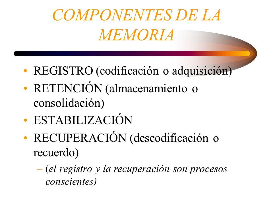 COMPONENTES DE LA MEMORIA