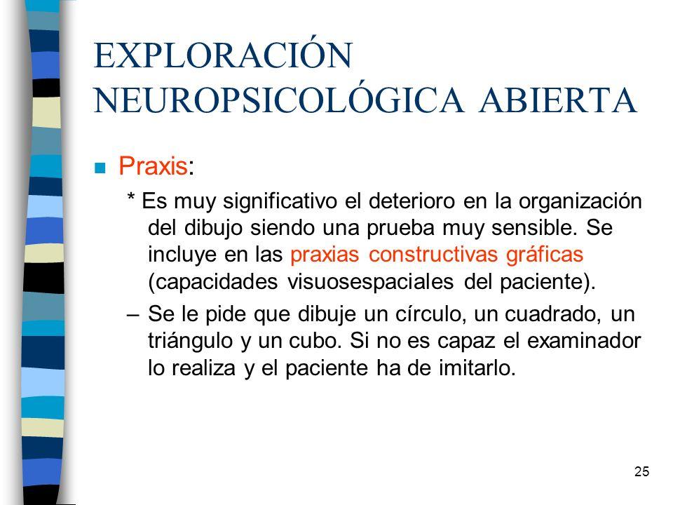 EXPLORACIÓN NEUROPSICOLÓGICA ABIERTA