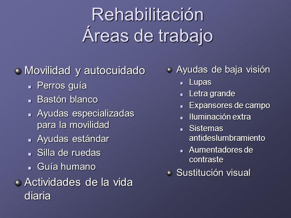 Rehabilitación Áreas de trabajo