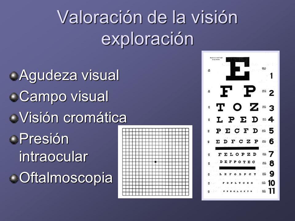 Valoración de la visión exploración
