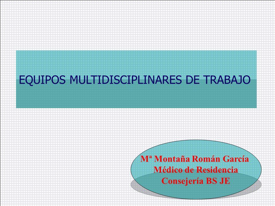 Mª Montaña Román García