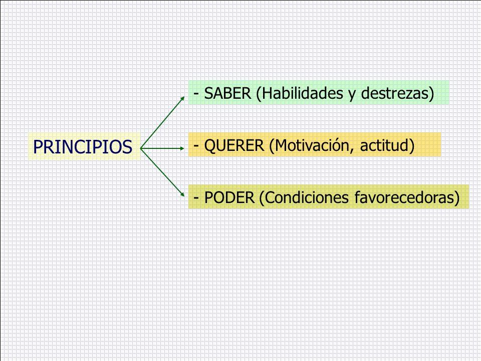 PRINCIPIOS - SABER (Habilidades y destrezas)