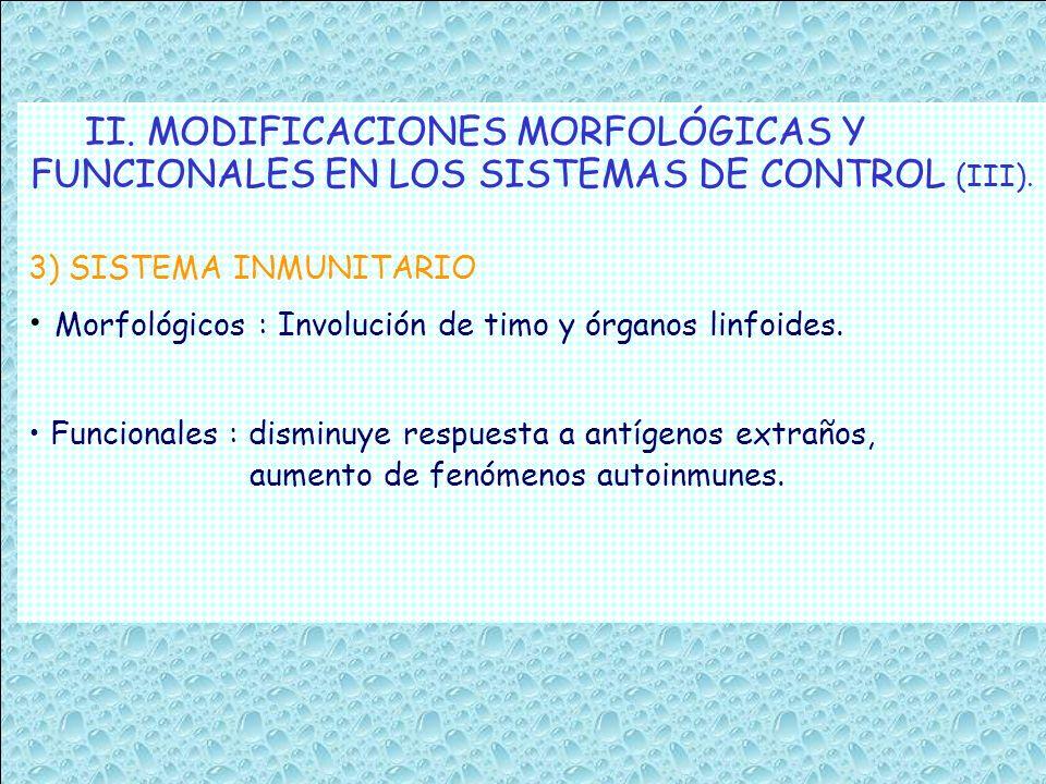 FUNCIONALES EN LOS SISTEMAS DE CONTROL (III).