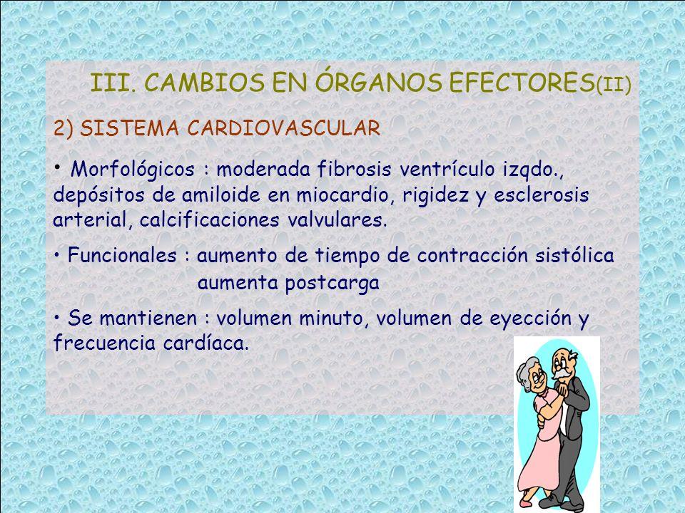 III. CAMBIOS EN ÓRGANOS EFECTORES(II)