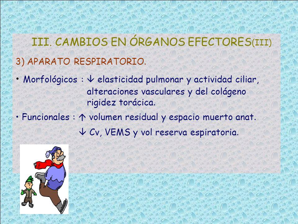 III. CAMBIOS EN ÓRGANOS EFECTORES(III)