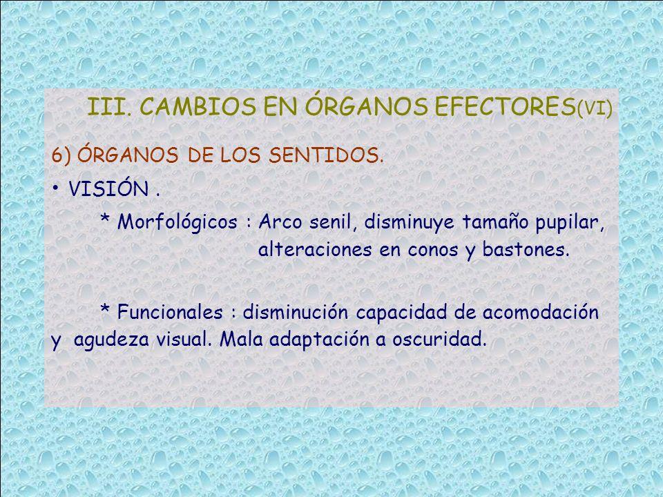 III. CAMBIOS EN ÓRGANOS EFECTORES(VI)