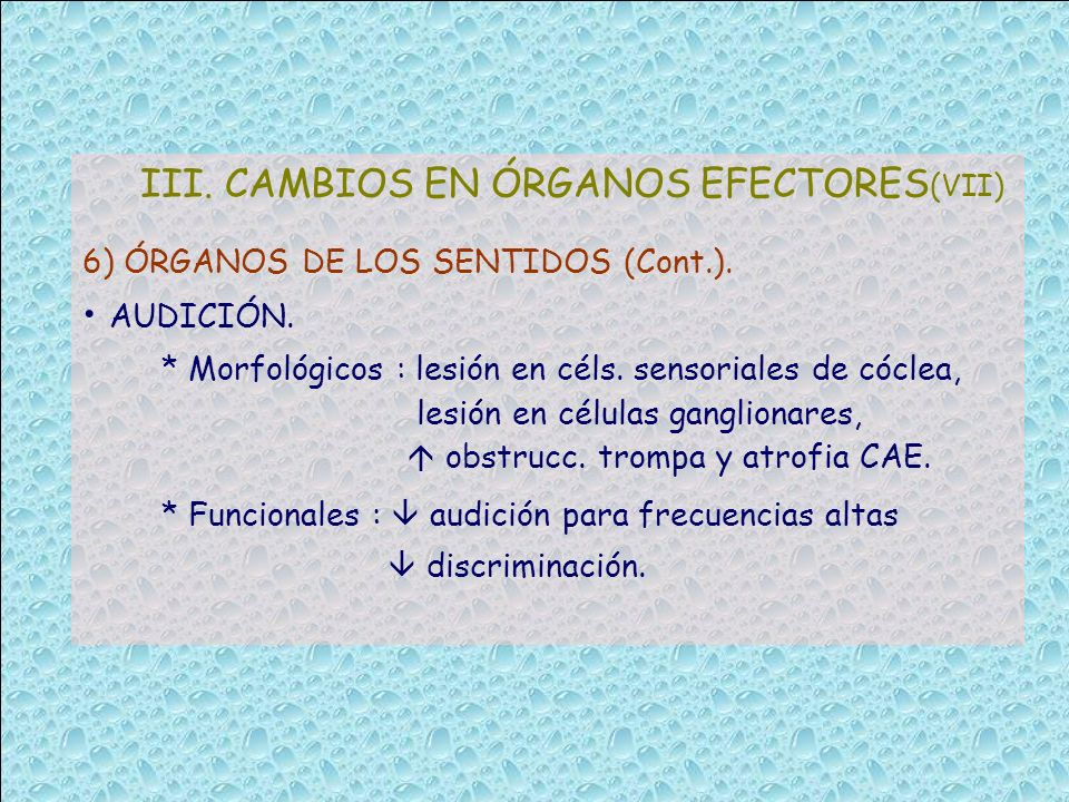 III. CAMBIOS EN ÓRGANOS EFECTORES(VII)