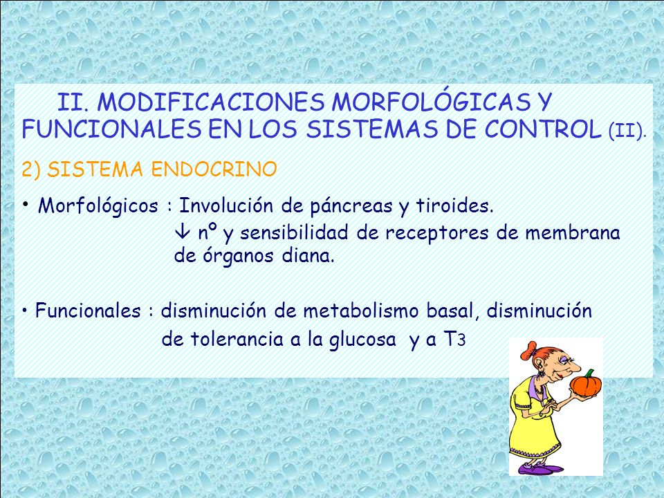 II. MODIFICACIONES MORFOLÓGICAS Y