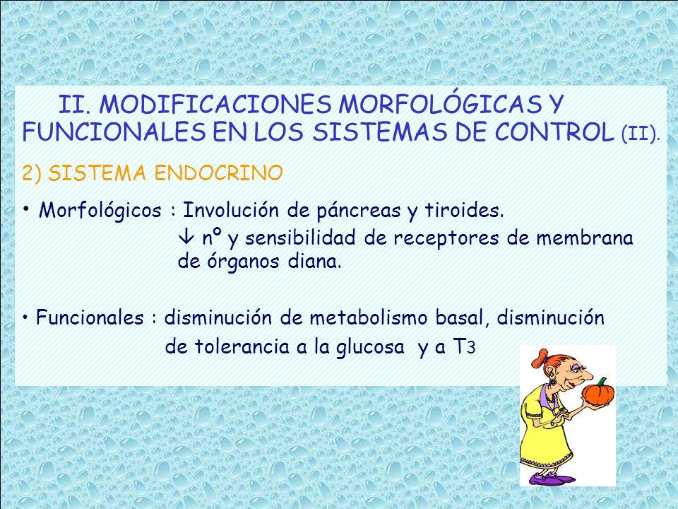 II. MODIFICACIONES MORFOLÓGICAS Y