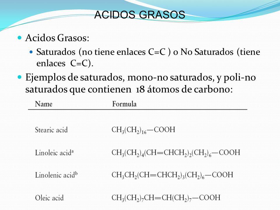 ACIDOS GRASOS Acidos Grasos: