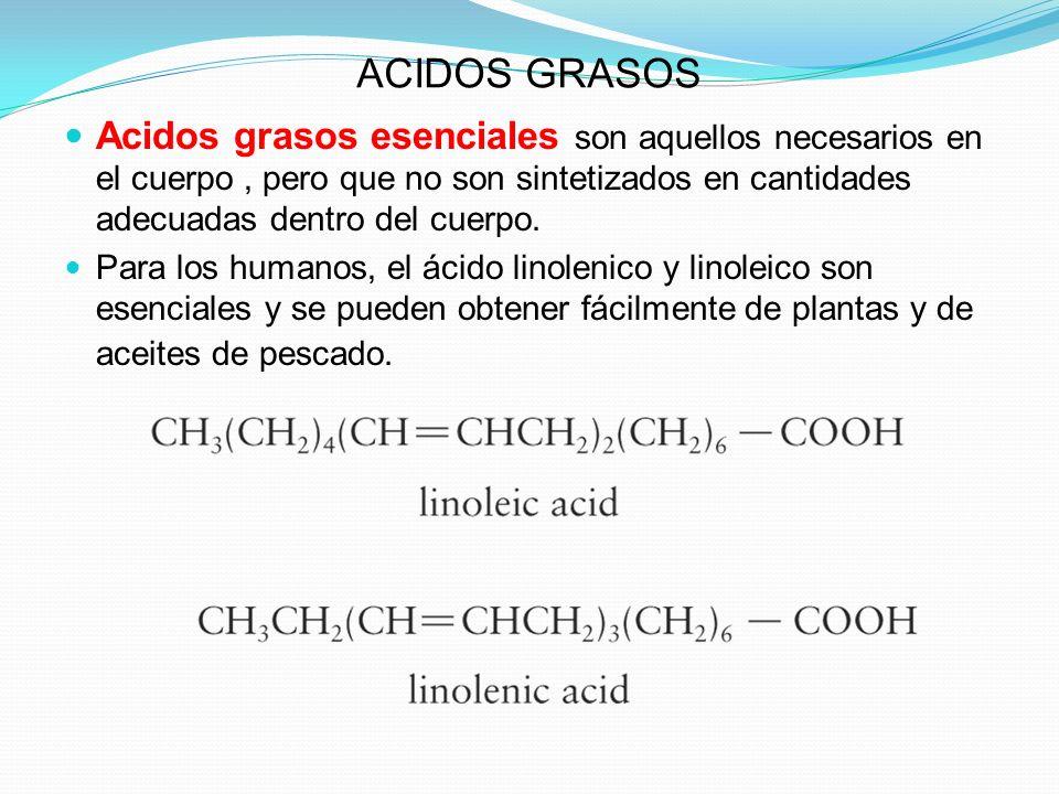 ACIDOS GRASOS Acidos grasos esenciales son aquellos necesarios en el cuerpo , pero que no son sintetizados en cantidades adecuadas dentro del cuerpo.