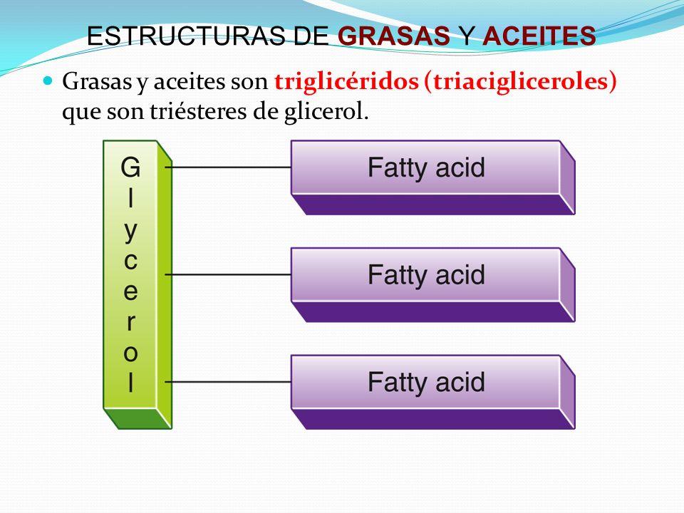 ESTRUCTURAS DE GRASAS Y ACEITES