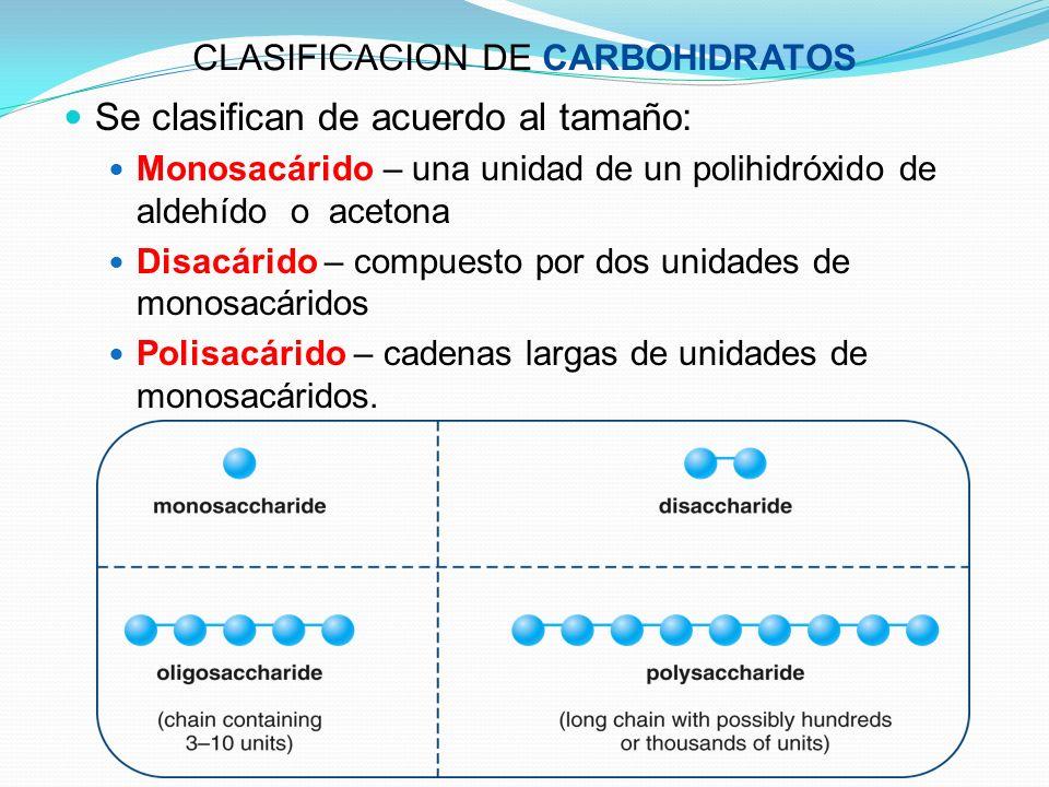 CLASIFICACION DE CARBOHIDRATOS