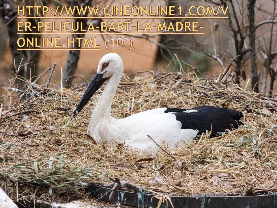 http://www. cineonline1. com/ver-pelicula-bart-la-madre-online