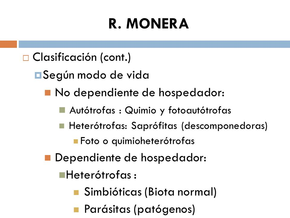 R. MONERA Clasificación (cont.) Según modo de vida