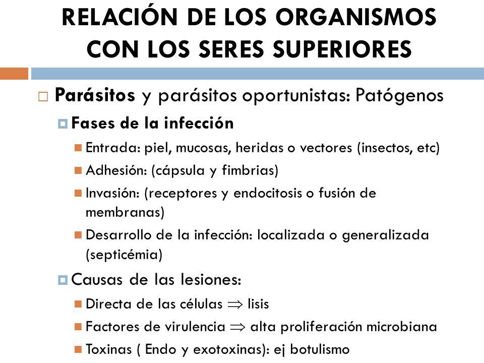 RELACIÓN DE LOS ORGANISMOS CON LOS SERES SUPERIORES