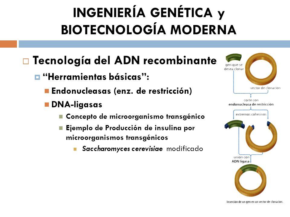 INGENIERÍA GENÉTICA y BIOTECNOLOGÍA MODERNA