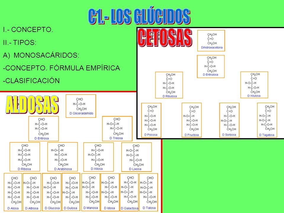 C1.- LOS GLÚCIDOS CETOSAS ALDOSAS I.- CONCEPTO. II.- TIPOS: