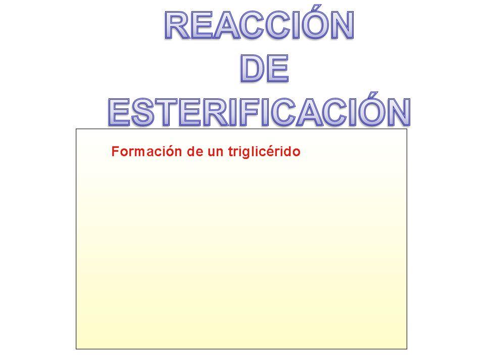 REACCIÓN DE ESTERIFICACIÓN